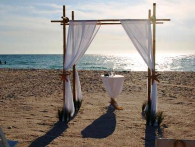 Bamboo-Canopy for-your beach or outdoor-wedding-.jpg