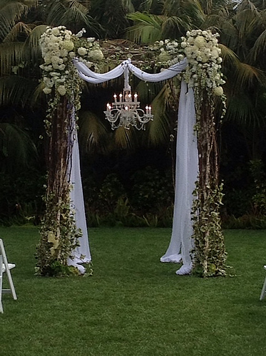 Wedding Arch And Chuppah