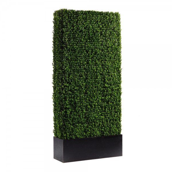 Boxwood Hedge Panels 4ft x 8ft
