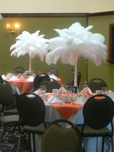 Feathers Centerpieces FCP-83
